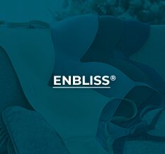 Enbliss